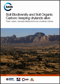 IUCN CELEBRATES WORLD DAY TO COMBAT DESERTIFICATION WITH RELEASE OF NEW PUBLICATION