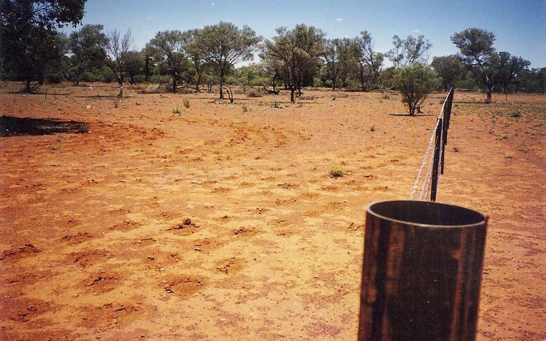 INCREASING PERENNIAL GRASSES USING LOW-COST MINIMUM-DISTURBANCE TECHNIQUES