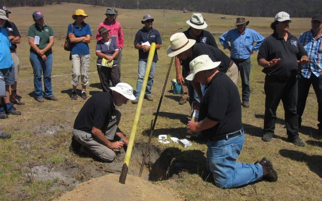 THE NSW SOIL KNOWLEDGE NETWORK – A POSSIBLE MODEL TO HELP MAINTAIN RANGELANDS EXPERTISE?